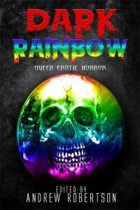 Dark Rainbow - Angel Leigh McCoy